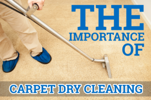 The Importance of Carpet Dry Cleaning